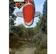 NVN NVN Koi Magazine 146