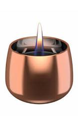 Tenderflame Crocus Glass rose (tafelhaard) - Tenderflame