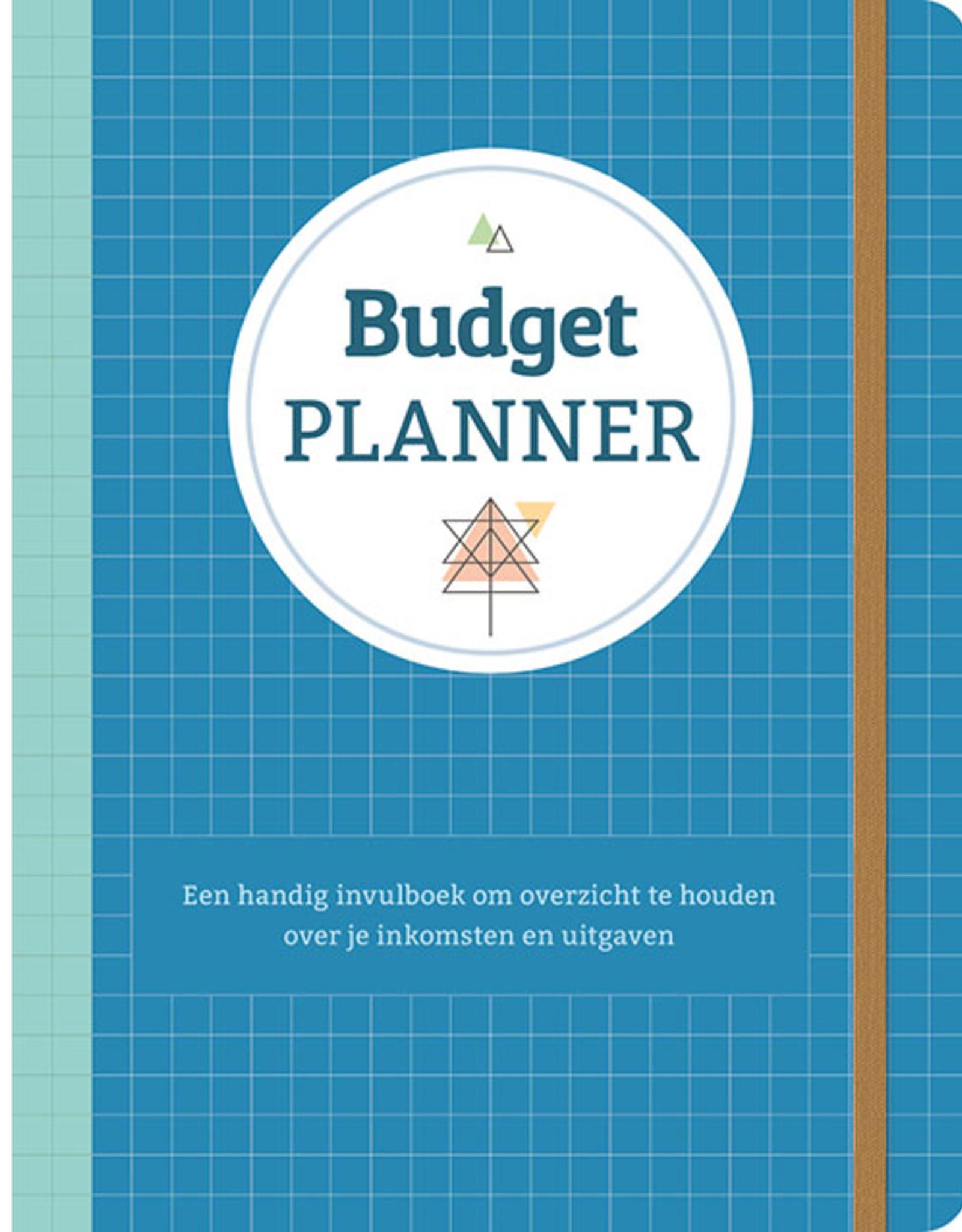 Budgetplanner blauw - Deltas
