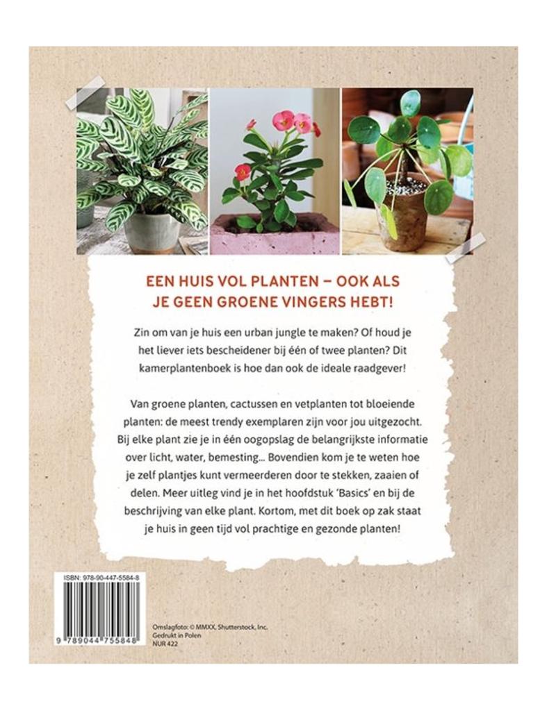 Raadgever Kamerplanten - Deltas