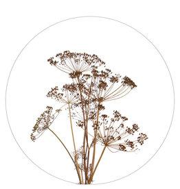 Zoedt Muurcirkel droogbloemen 30x30cm - Zoedt