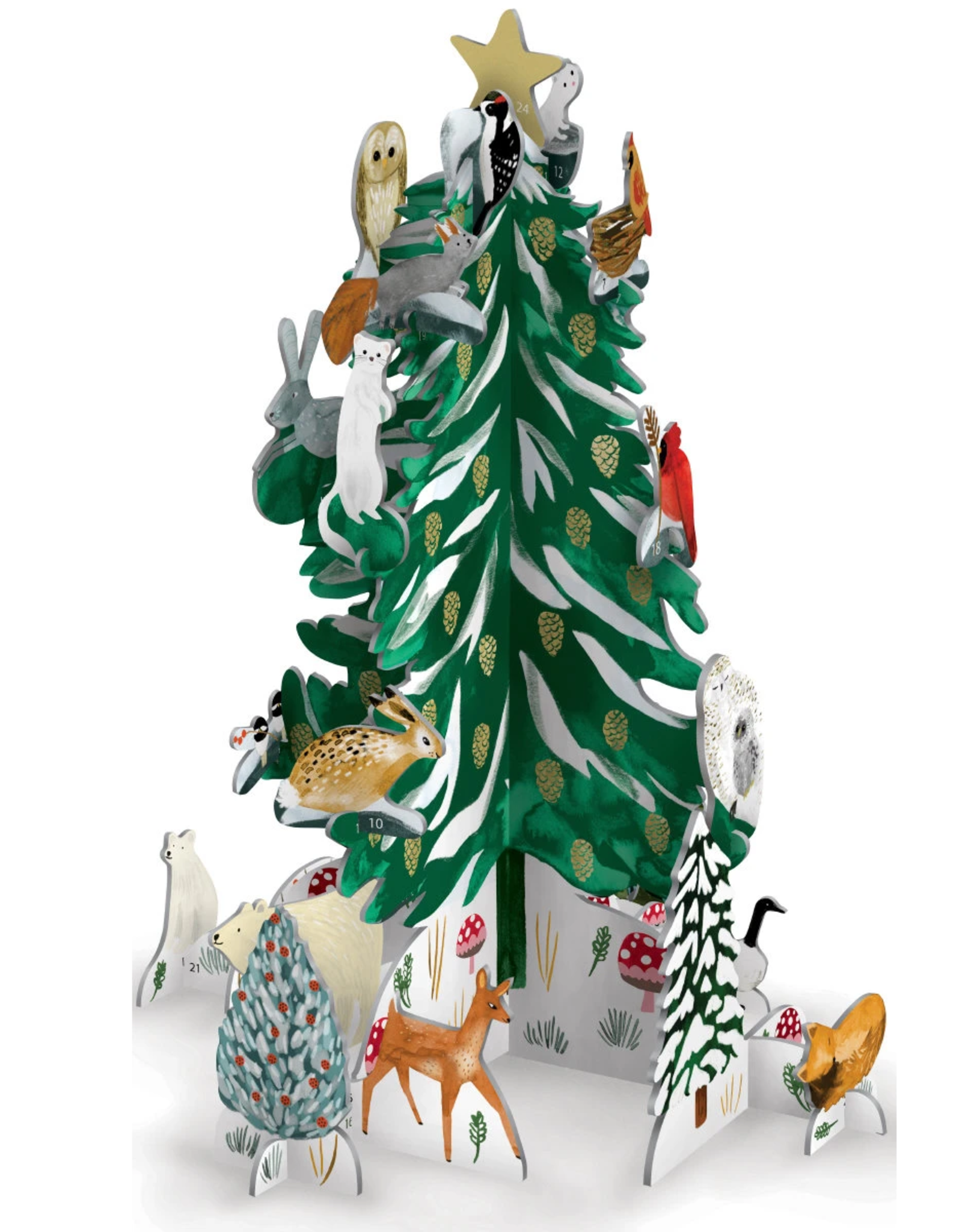 Adventskalender Pop & Slot Christmas Conifer