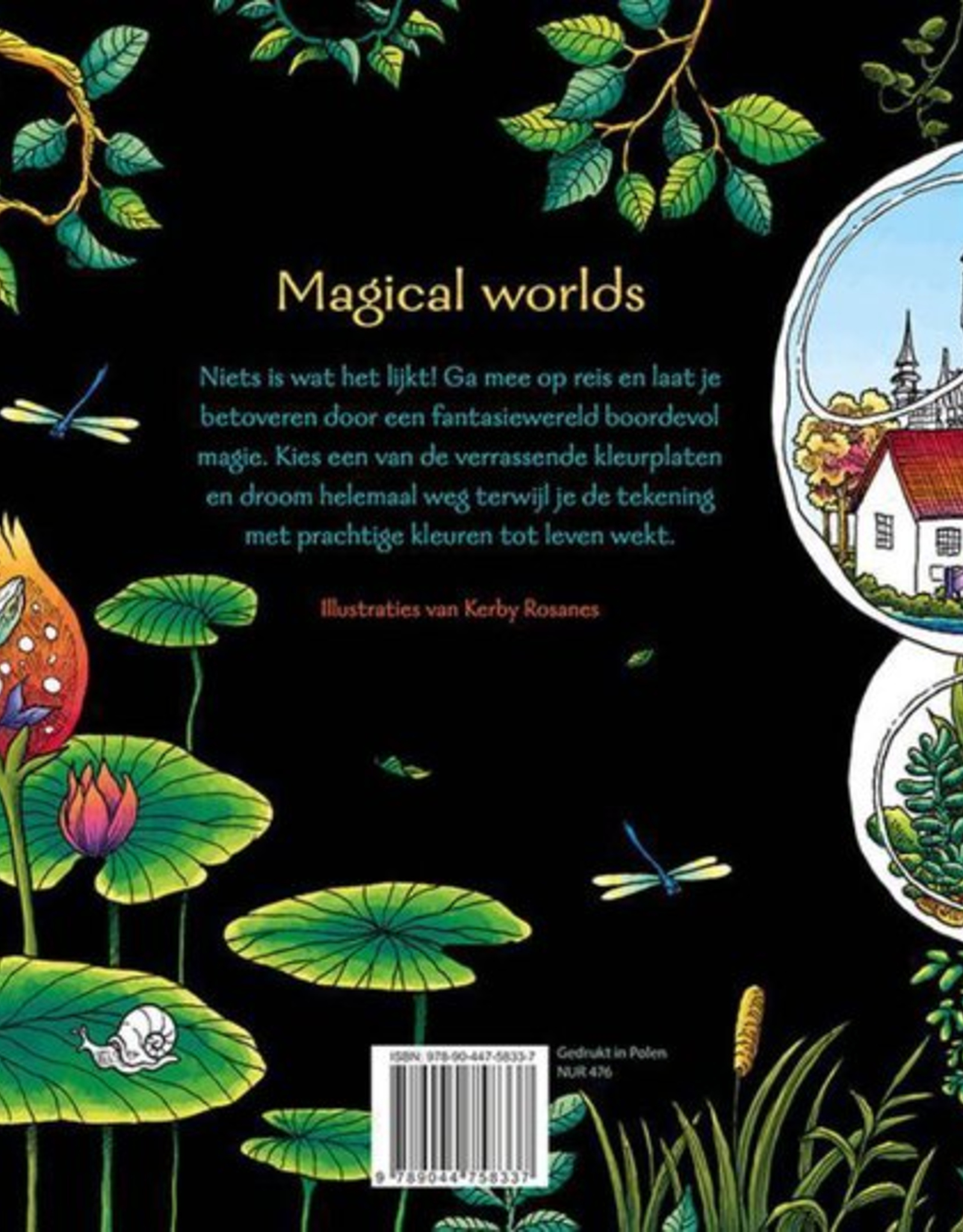 Deltas Magical Worlds - Kleuren voor Volwassenen