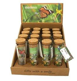 Vlinderbloemen - Bloemenzaadjes in glazen buisje