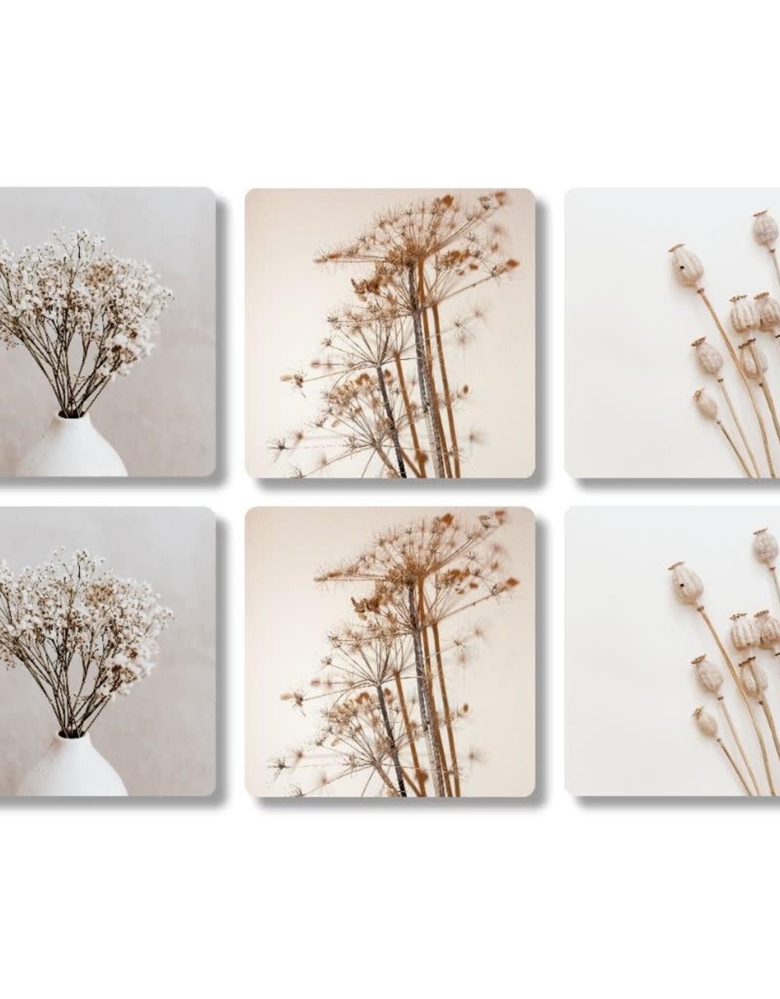 The Big Gifts Onderzetters 6stuks Plant/Bloem - The Big Gifts