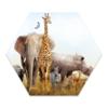 Label2X Muurhexagon kids | safari