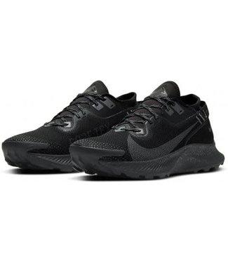 Nike Nike pegasus 2 GTX