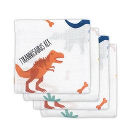Jollein Jollein tetradoeken Dinosaur (4pack)