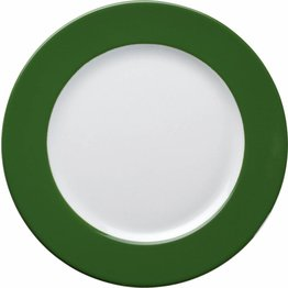 Teller flach 21,5cm grün