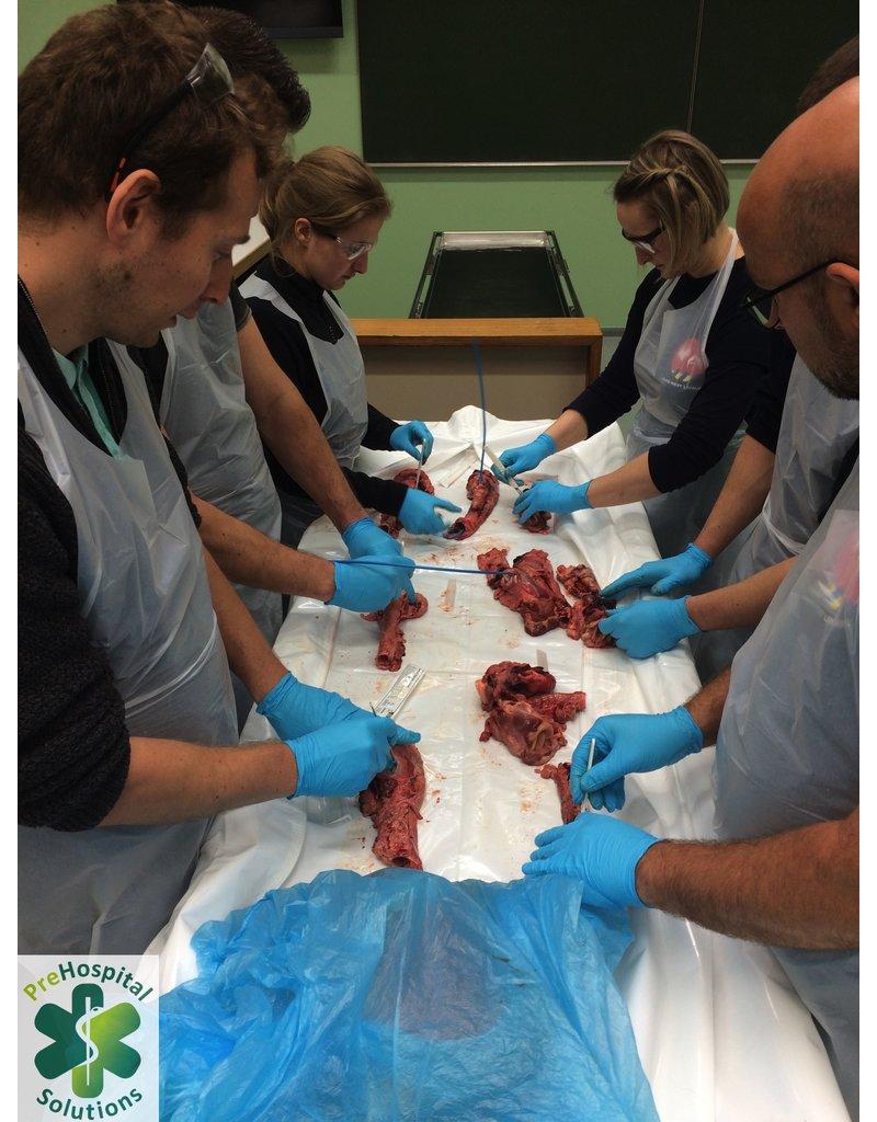 Cadaver Lab Training