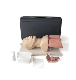 Airway Management Trainer