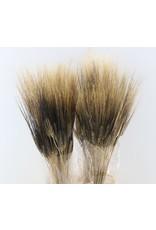 Gedroogde tarwe - Triticum - Black beard - 250 gram