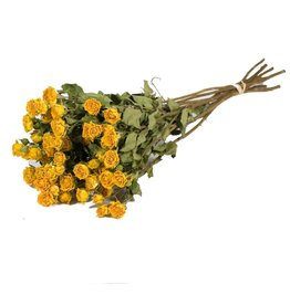 10 dried yellow roses