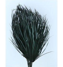 Drie gedroogde palmbladeren - Chamaerops - zwart