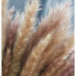 10 x Fluffy Pampas in diverse kleuren