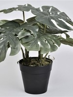 Artificial Monstera plant  ↥ 30 cm