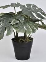 Kunstplant Monstera  ↥ 30 cm