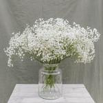 Solo-Blumenstrauß aus weißem Gips