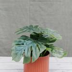 Künstliche Pflanze Monstera  ↥ 30 cm