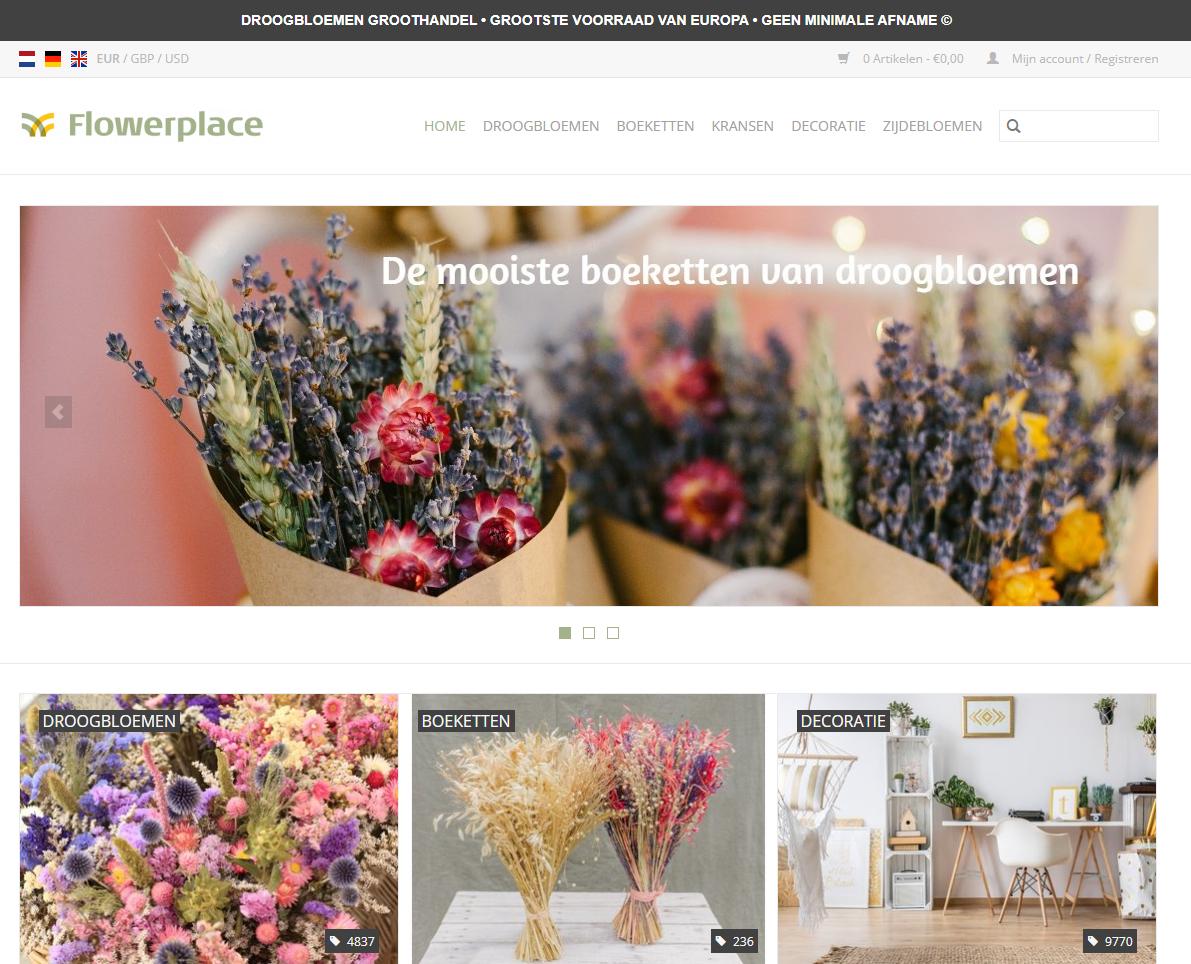 flowerplace groothandel droogbloemen