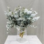 Bouquet of fresh eucalyptus