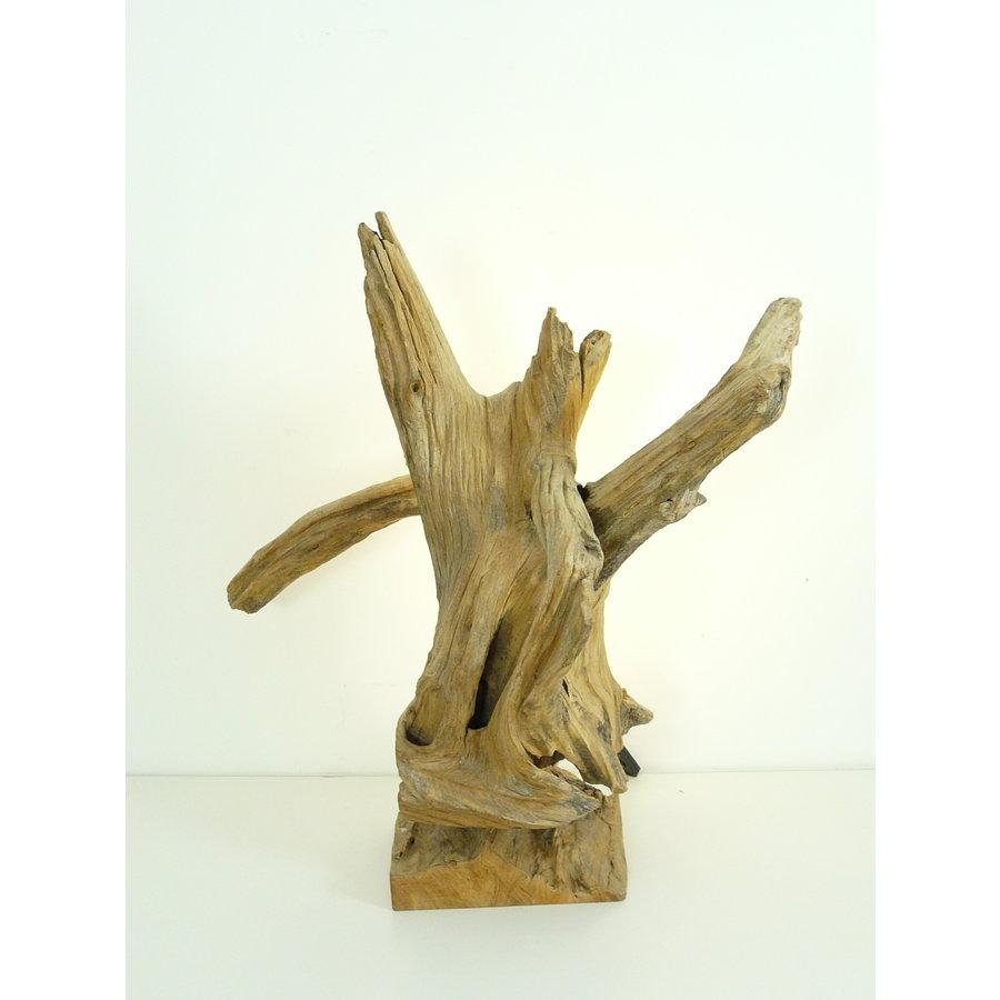 Tischleuchte Holz Skulptur Teak Wurzelholz-3
