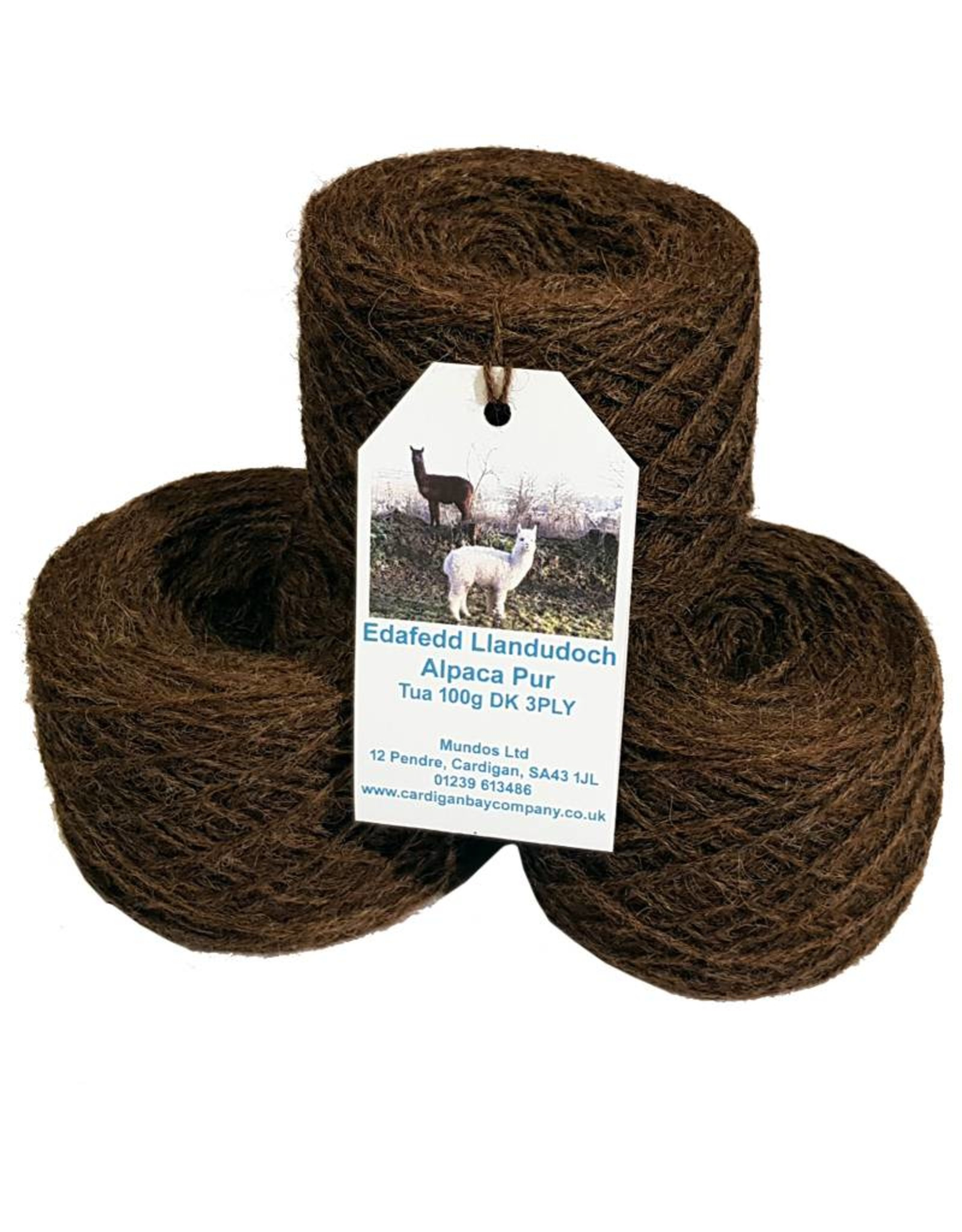 St Dogmaels Yarn - Pure Alpaca