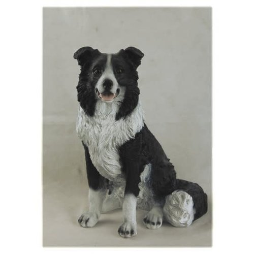 Polydeco Polystone Bordercollie hond zittend