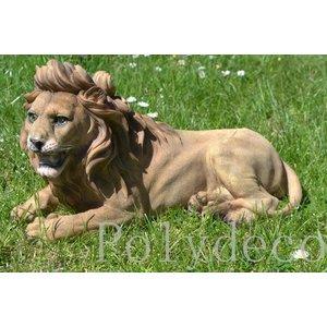 Polydeco Polystone liggende leeuw