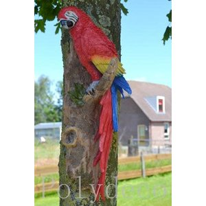 Polydeco Polystone papegaai hangend