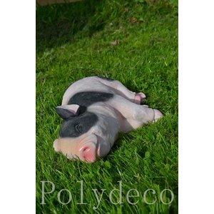Polydeco Polystone varken liggend