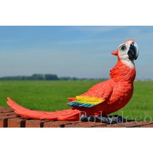 Polydeco Polystone papegaai rood gekleurd