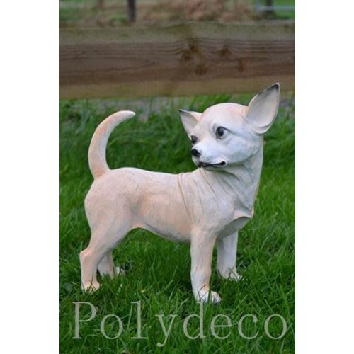 Polydeco Polystone chihuahua staand