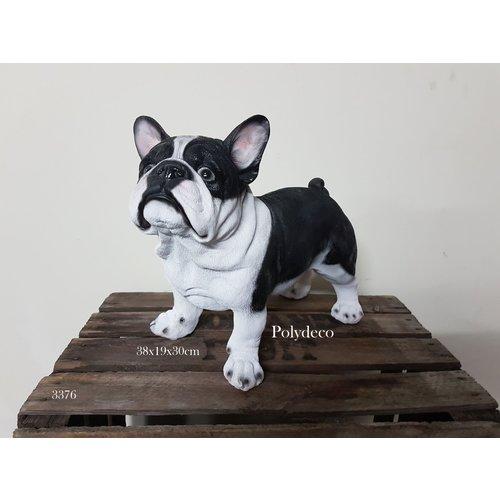 Polydeco Polystone franse bulldog zwart wit