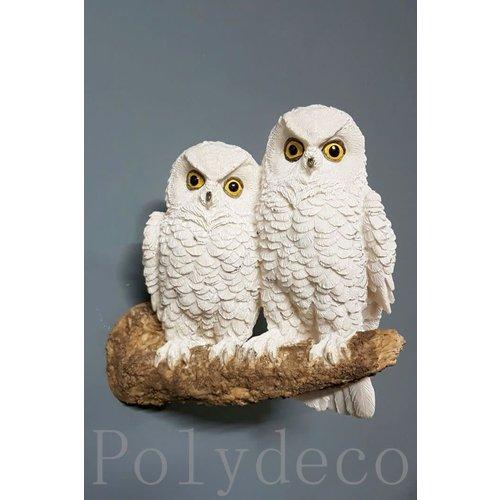 Polydeco Polystone witte uilen op tak