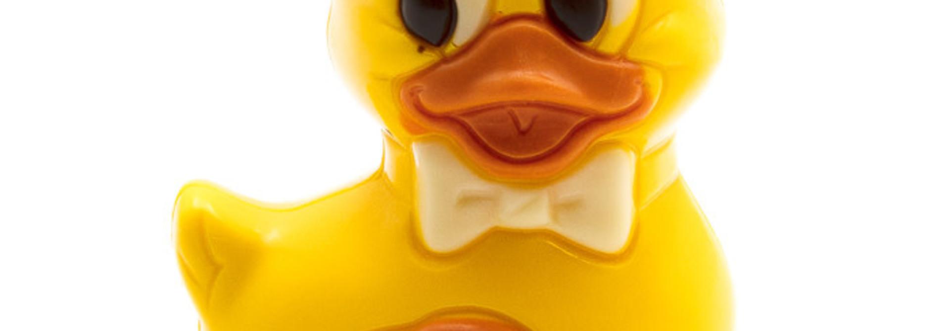 Swimming duck (yellow)