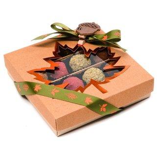 Chocomeli Autumn box of 16 truffle (mixed) 260 Grs