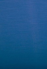 Kobaltblauwe tetra