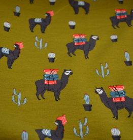 Lama journey Camel