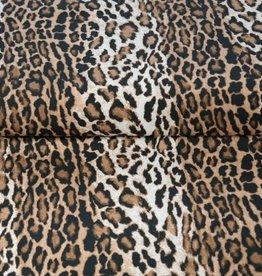 Stenzo Luipaard jersey