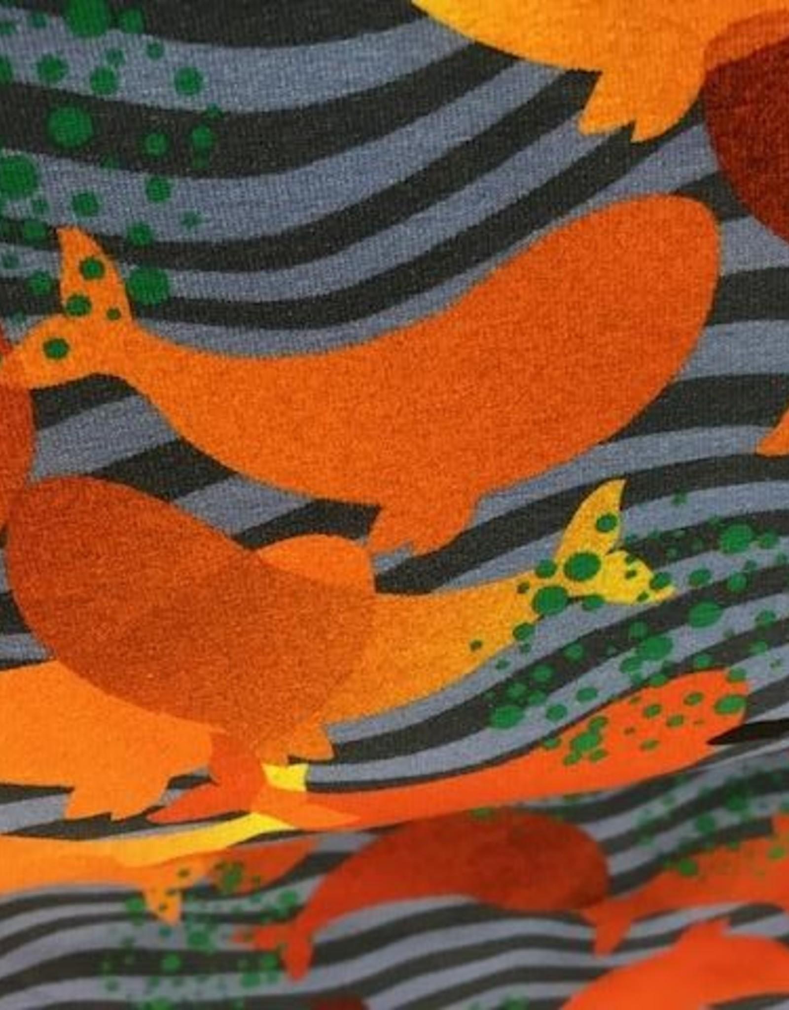 Oranje walvissen in de golven