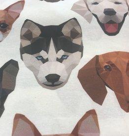 Hilco Dogs