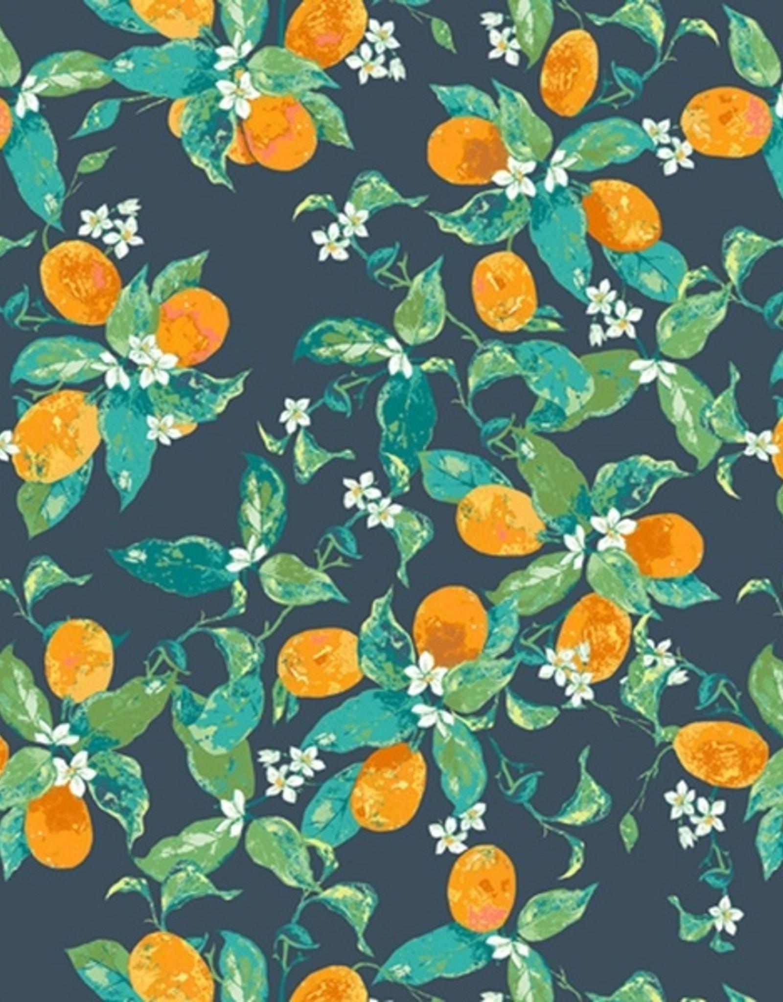 Art Gallery Sinaasappels