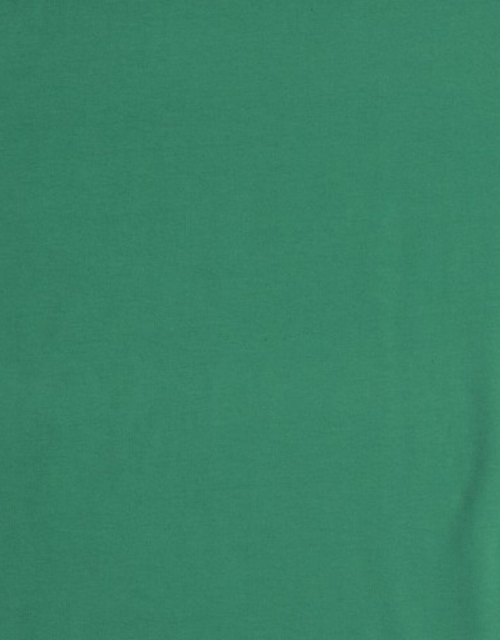 FT effen groen
