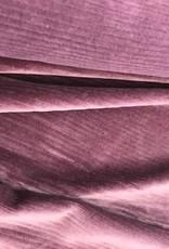 Stretch corduroy aubergine