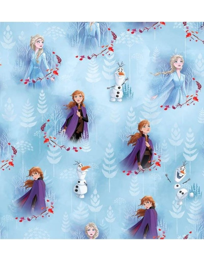 Frozen Anna en Elsa