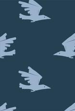 ABF Birds are coming