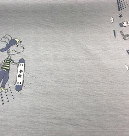 Paneel skaters