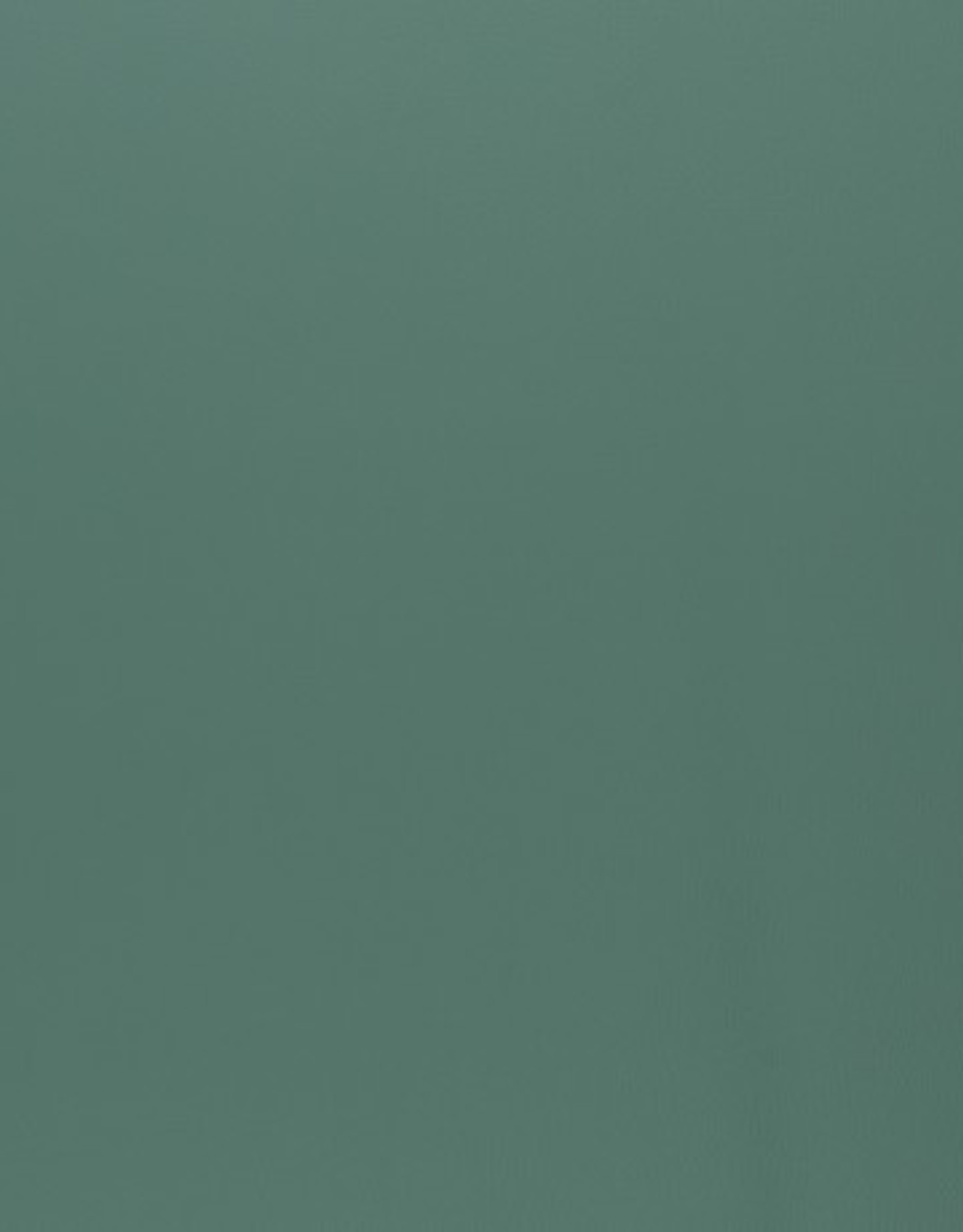 Faux leather metallic mint green