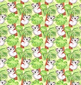 FT Koala
